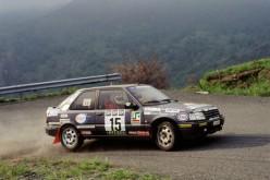 Peugeot Competition 208 Top. Da Trofeista a Pilota Ufficiale: Paolo Andreucci spiega come si fa