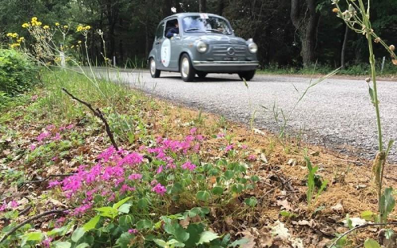 A San Marino in vetta Pierluigi Fortin e Laura Pilè su Fiat 600 del 1957